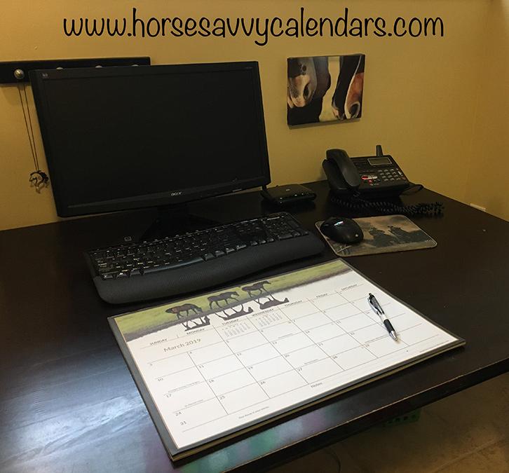 2019 Horse Savvy Ultimate Desk Calendar