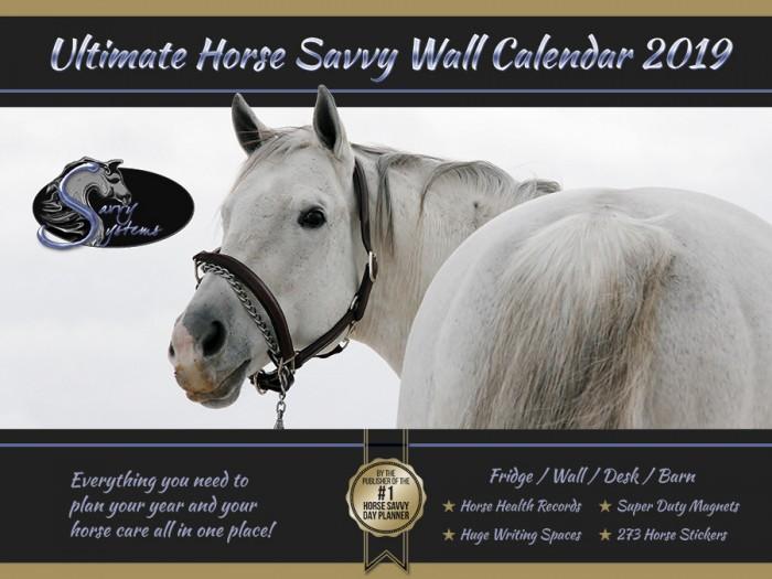 2019 Horse Savvy Ultimate Wall Calendar