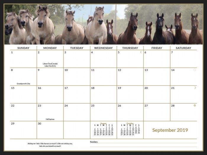 2019 Horse Savvy Ultimate Wall Calendar Month