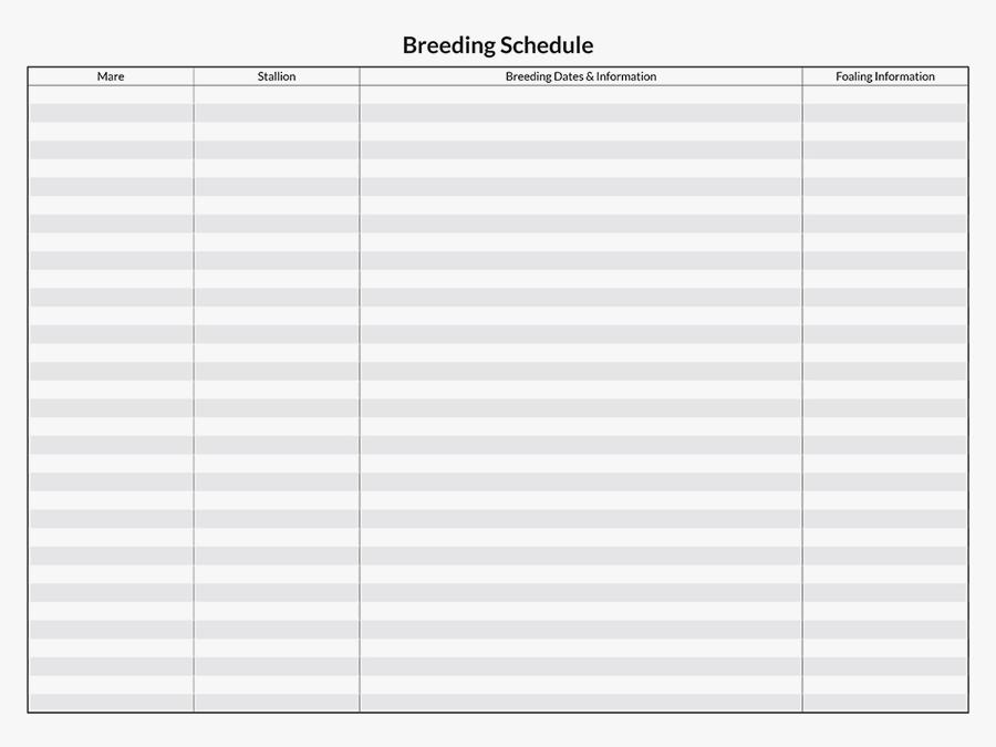 Horse Savvy Wall Calendar Breeding